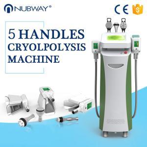 China Body Slimming Shaping Cryolipolysis Body Slimming Machine Beautician Use on sale