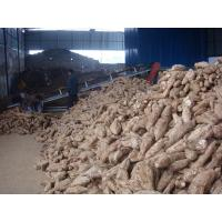 Quality Puerarin extract flavone 80% for sale