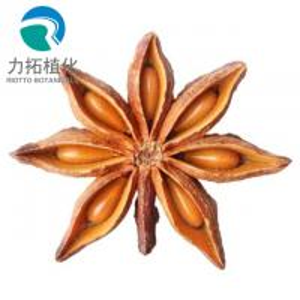 Factory sell Fructus Anisi Stellati Extract Powder Shikimic Acid 98%