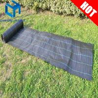 Quality Black color with green line weed mat/ground cover/slit fence/weed control mat for UK market for sale
