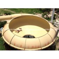 Joy Ride Space Bowl Slide / FRP + Stainless Steel Play Equipment For Schools /