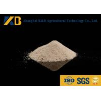 Quality Animal Nutrition Supplements / White Rice Protein Powder High Biological Value for sale