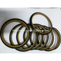 China HBTS/SS/SSW  Rod Buffer Seal / Custom Size PTFE NBR Material on sale