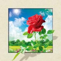Quality Waterproof Flower Images 5d 3D Lenticular Pictures 40x40cm For Restaurant for sale