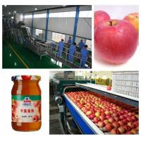 China apple jam production line turnkey project machine on sale