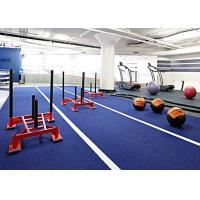 Buy 10mm Gym Artificial Turf  Fire Resistant Indoor Fake Turf Flooring For Gyms at wholesale prices
