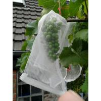 Quality 100% HDPE UVRadiationAgents 3% Fruit Tree Covers , Bags To Cover Fruit On Trees for sale