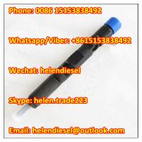 Quality Delphi 28232248 ,EJBR04001D, R04001D,166009384R ,8200049873,7711497153, Genuine and New CR Injector for sale