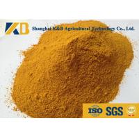 Quality Dried Feed Powder Corn Gluten Meal Animal Feed For Direct Additive Use for sale