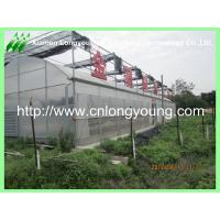 Quality mutil-span greenhouse for sale