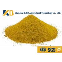 Quality No Impurities Corn Gluten Meal / Pet Dog And Fish Feed For High Protein Content for sale