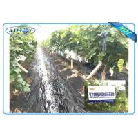 Quality Anti UV PP Non Woven Landscape Fabric for Agricultural Area as Ground Coverings or Plant Bags for sale