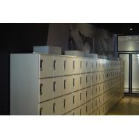 Quality Wear Resistant 5 Tier Lockers With Special Lock , Easy Install Intelligent Locker Systems for sale