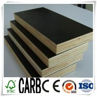 Quality Water Proof Black Film Faced Plywood with WBP Glue for sale