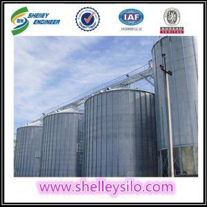 Quality 5000 ton galvanized steel cereal storage grain silo price for sale for sale