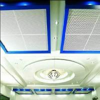 Quality Metal Ceiling Board (TLD-85) for sale