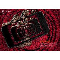 Quality OK3D Zoom lenticular effect designed by PSDTO3D101 software for sale
