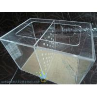 Quality Antique acrylic wall fish tank for sale