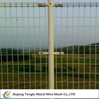 Buy cheap Double Ring Fence Q 235 Ornamental Double-Loop Wire Mesh Fence 50X200mm from wholesalers