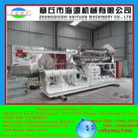 Quality CHINA Jinan professional floating fish feed pellet processing machine for sale
