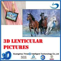 Quality 3d horse pic_2 for sale