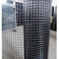 China Stainless Steel Wire or Galvanized Wire or PVC coated Wire Welded Mesh Rolls on sale