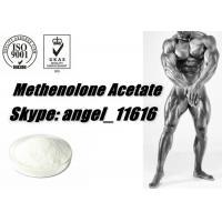 Quality Muscle Growth Primobolan Steroids Methenolone Acetate powder primobolone 434-05-9 for sale