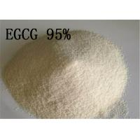 Anti Oxidant Natural Plant Extracts Epigallocatechin Gallate EGCG 95 Tea 989 51 for sale