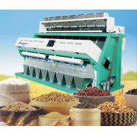 Quality huge capacity rice color sorter Rice color sorting machine for sale