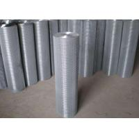 Quality Thin Welded Wire Cloth Roll Type , Galvanized Stainless Steel Weld Mesh for sale