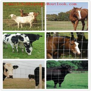 Buy cheap deer barrier ribbon/5ft deer fence/green deer fencing/deer high deer fencing from wholesalers