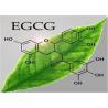 Grey White Powder Epigallocatechin Gallate Egcg 989 51 5 Tea Extract Anti for sale