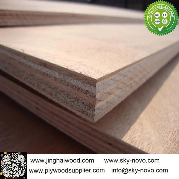 Buy Bintangor plywood at wholesale prices