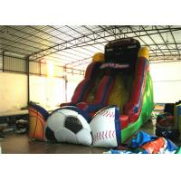 Quality Inflatable slides  XS205 for sale