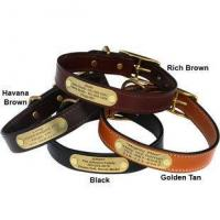 Quality English Bridle Leather Dog Collar with Personalized Nameplate for sale