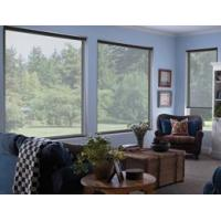 China Sheer Weave Roller Shades - 14% on sale