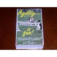 Quality Agility is Fun - Problems 2 for sale