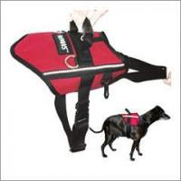 Buy cheap FitPAWS Canine Safety Harness from wholesalers