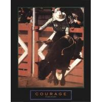 Quality Courage - Bull Rider - Unknown for sale