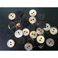 Brownlip shell Button