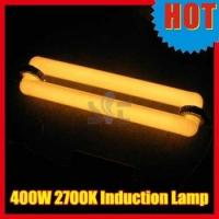 China Low Frequency Induction Lights 2700K low frequency induction lamp 400w on sale