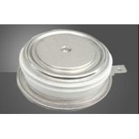 Standard recovery diode(capsule version)