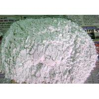 Quality Quick Lime Powder for sale