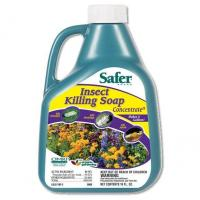 Safer Brand Insect Killing Soap, 16 oz. Concentrate
