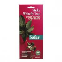 Quality Safer Brand Sticky Whitefly Trap for sale