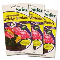 Quality Safer Brand Houseplant Sticky Stakes, 3-Pack for sale