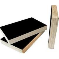 Buy cheap Black film construction film sheet from wholesalers