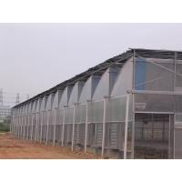 Quality zigzag greenhouse for sale