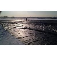Quality Geomembrane for landfill for sale