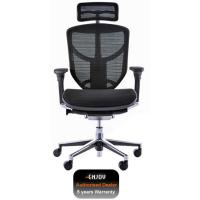 Quality Office Chairs Enjoy Office Chair 2010 for sale